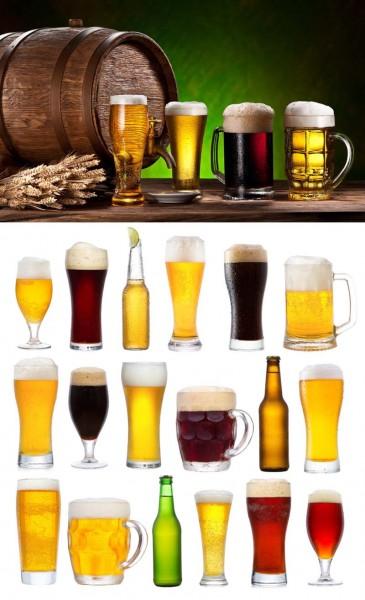 בירה בדיזינגוף סנטר-צילום פוטליה
