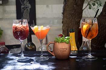 נבחרת המשקאות בר הקיץ- יובל שי