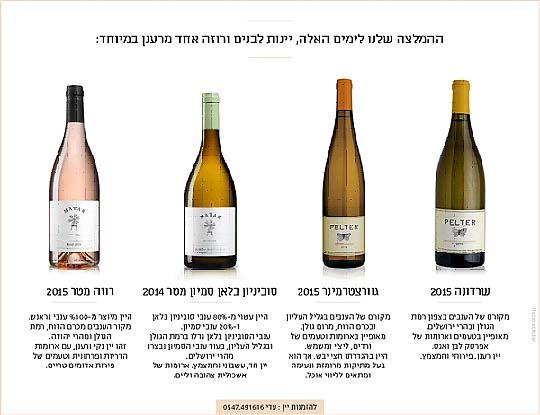 פלטר יינות