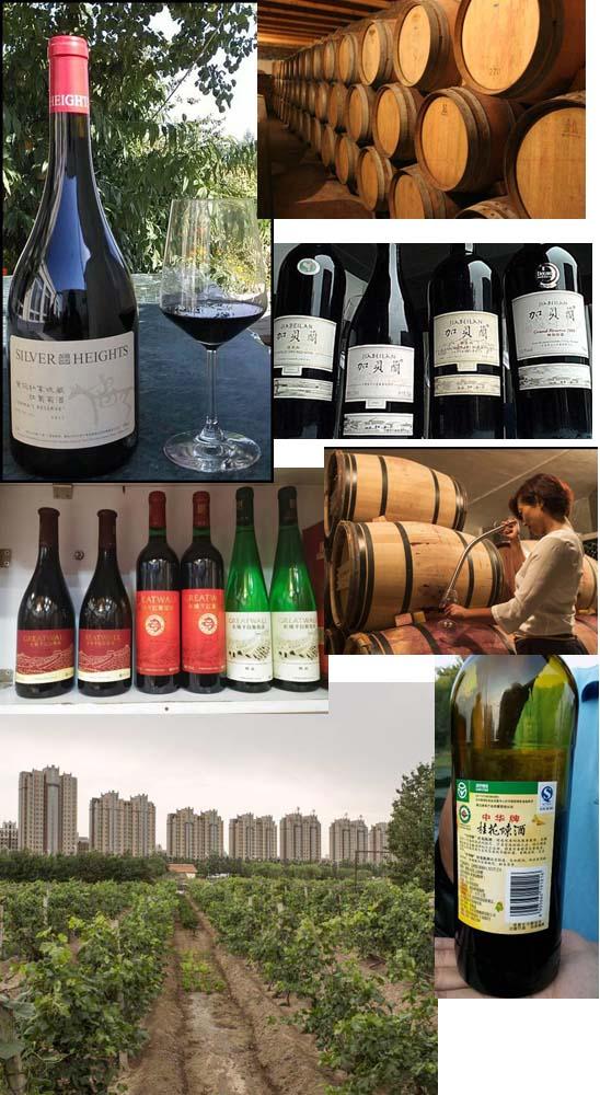 יין בסין