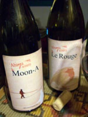 עבייה-יינות בציר 2008