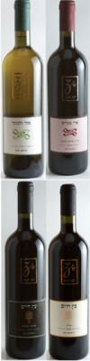 זכות-יינות בציר 2009